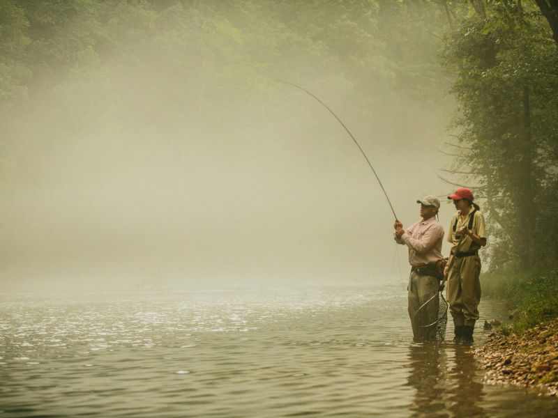 Mountain Trout Fishing In Western North Carolina