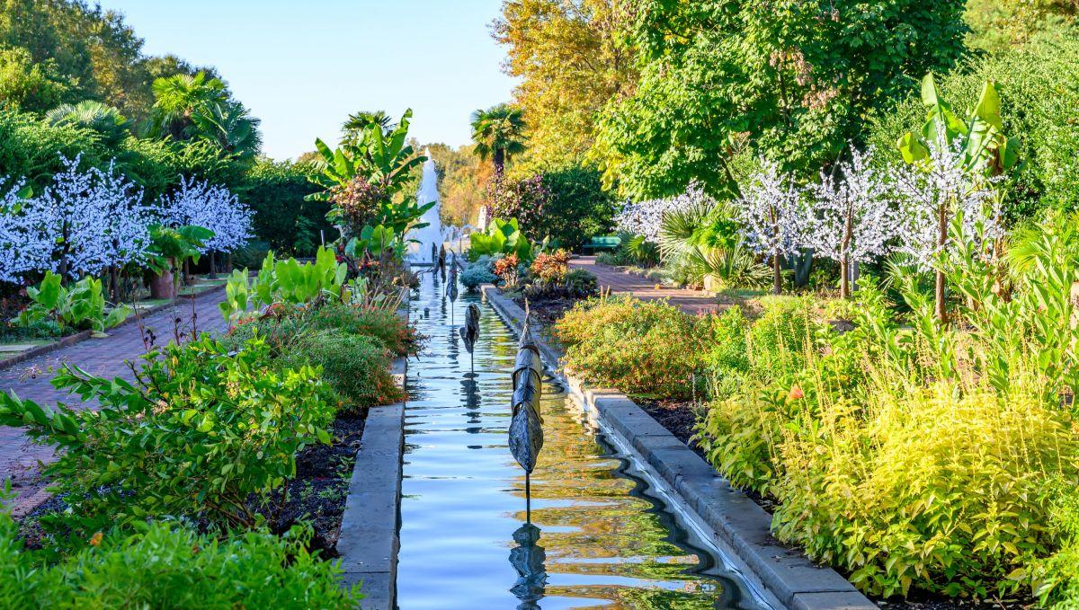 The Revolutionary Good of Gardens Heart /& Soil