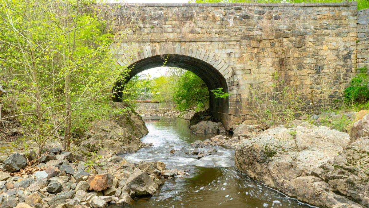 Stream flowing underneath bridge in Roanoke Rapids
