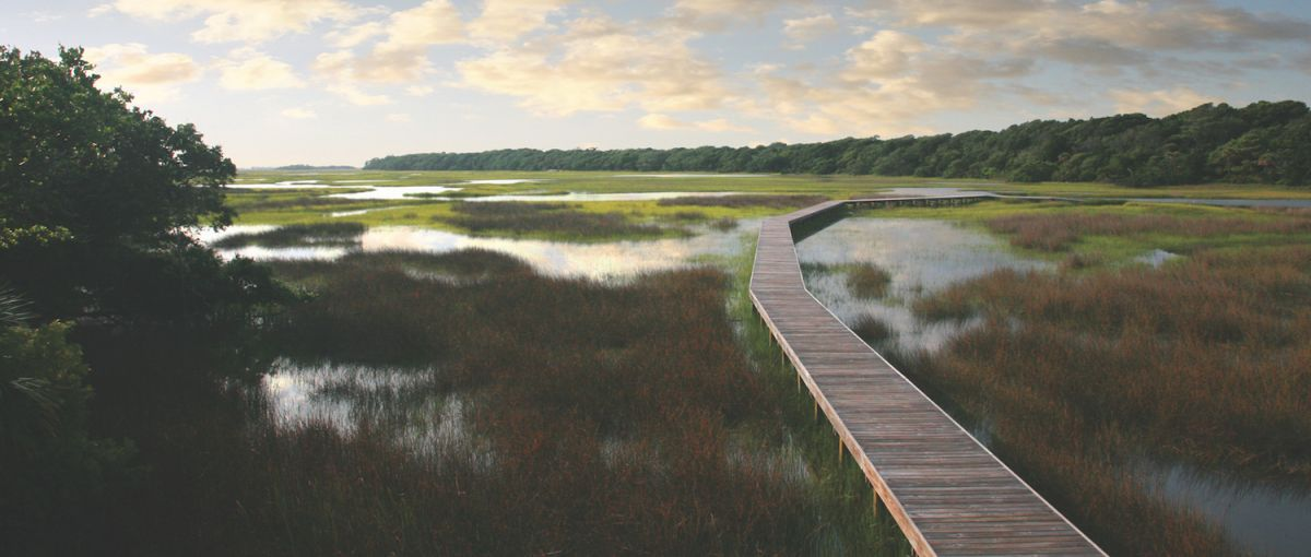 Take a relaxing stroll or paddle along Bald Head Creek