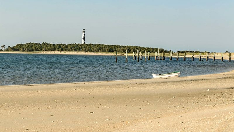 Beachcombing Tips Tricks For Seashell Hunting In Nc Visitnc