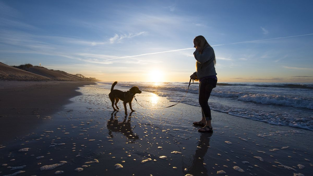 Woman holding dog on leash on empty beach with sun and ocean in background