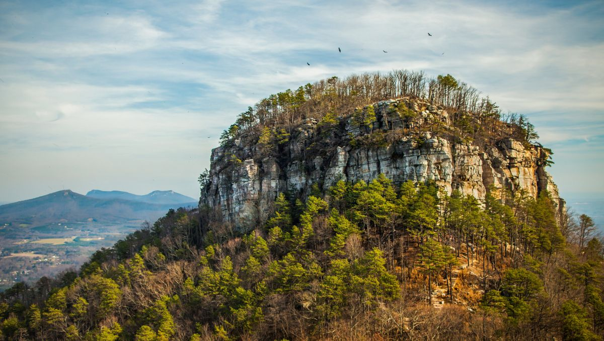Birds flying above knob of Pilot Mountain during daytime