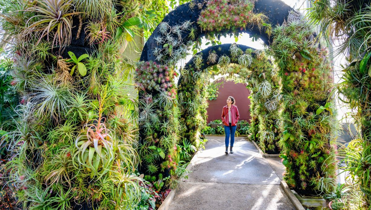 Woman walking through Daniel Stowe Botanical Garden