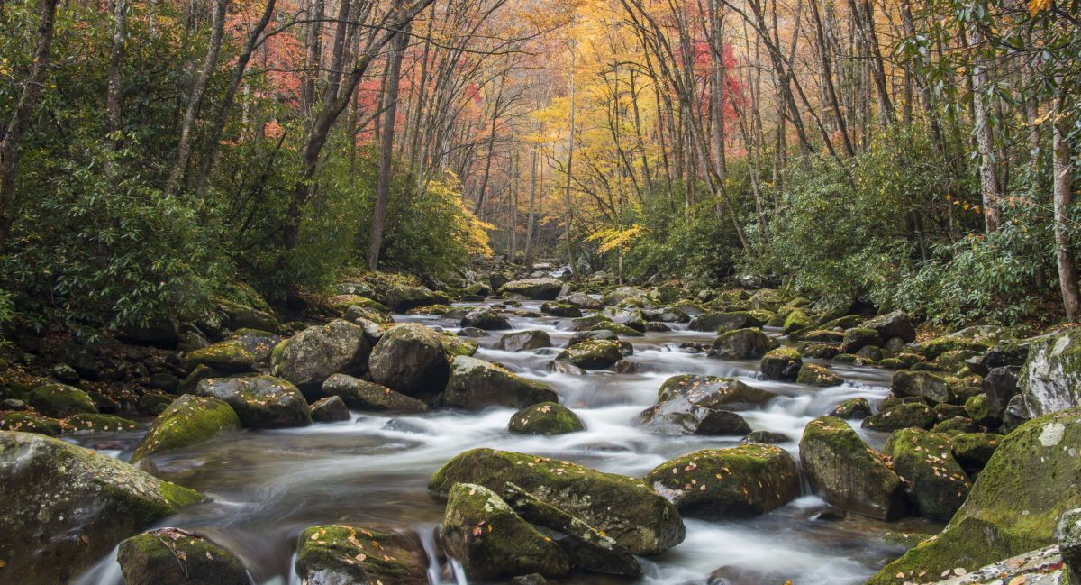 beyond the guidebook great smoky mountains national park visitnc com
