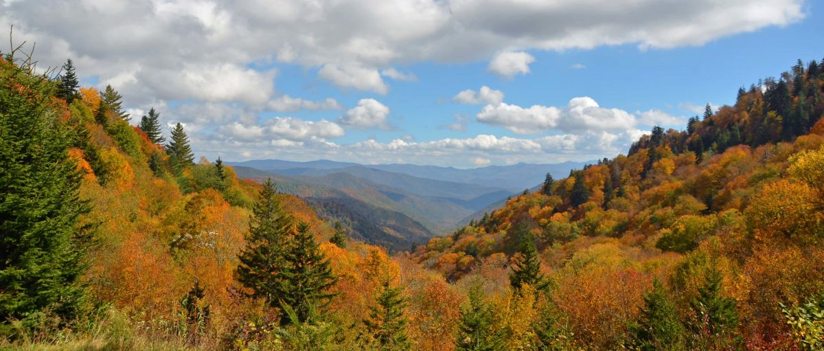 Discover amazing views from Oconaluftee Valley Overlook